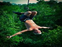 Fly through the jungle