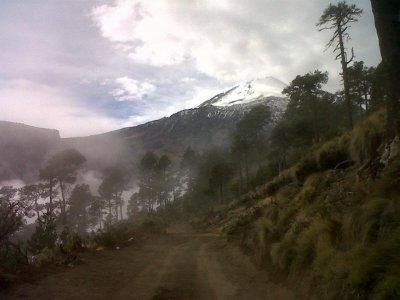 El Bosque Encantado Caminata