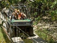 Buggie suspension bridges
