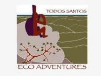 Todos Santos Eco Adventures Caminata
