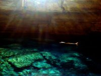 Swimming in the cenote