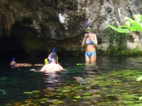 Snorkel in cenotes