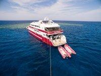 Nuestro barco para renta