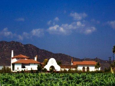 Baja Wine Tours