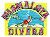 Mismaloya Divers Pesca
