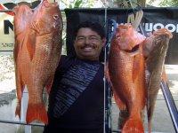 Huachinangos.Spearfishing..