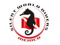 Silent World Divers México Snorkel