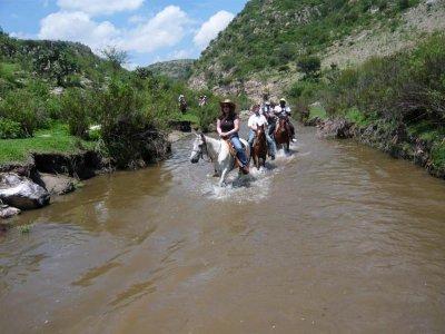 San Miguel Adventures Cabalgatas