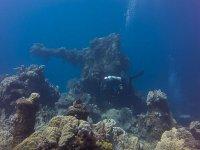 Diving in reefs
