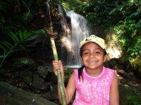 Trek through the rainforest
