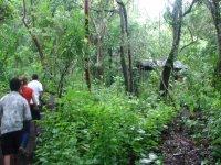 Caminata en selva