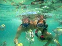 Haciendo snorkel entre peces