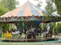 Images of the carousel