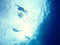 Explora con snorkel