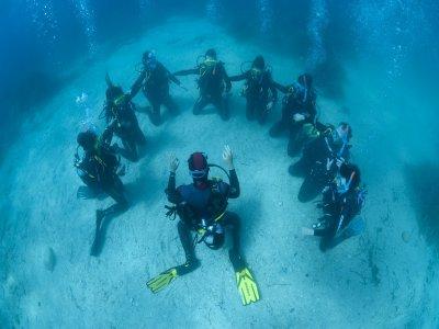 Scuba Sapiens Divers