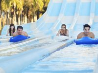 Glide on the giant slides