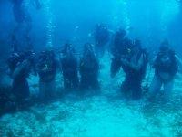 Buceo en grupo