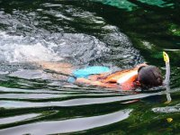 Snorkelea