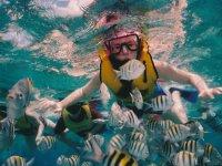 Disfrutando de un tour de snorkel
