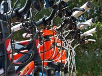 Bicycle tours for tours