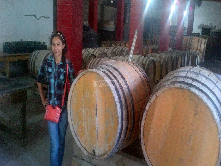 En la casa de vinos