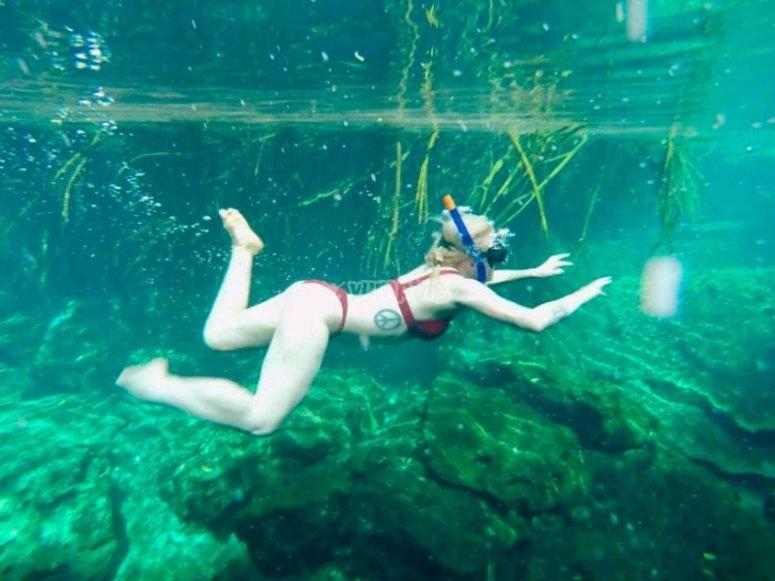 Practica snorkel en un manglar