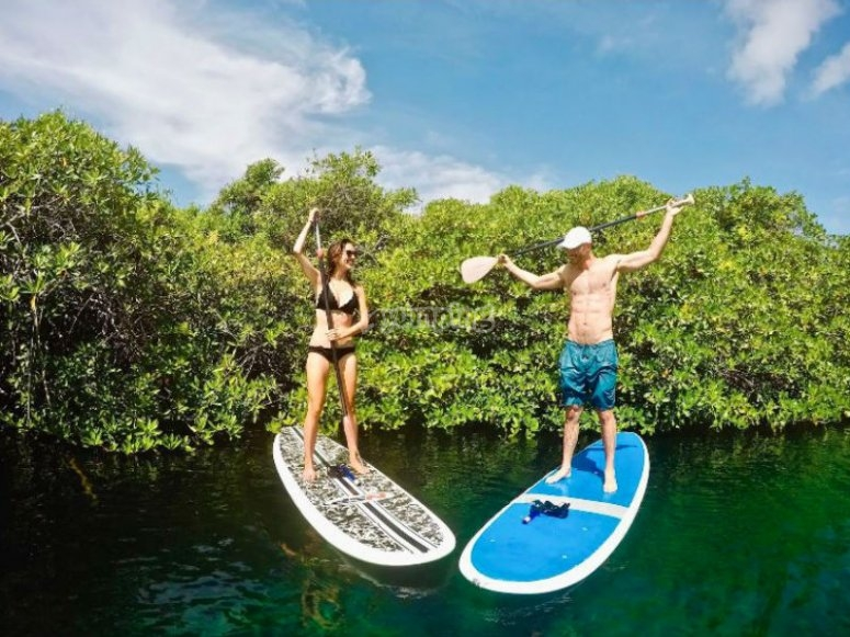 Sail on your board through a cenote in the Riviera Maya