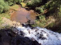 Nature in Morelia