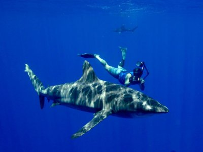 Rango Extendido Puebla Snorkel