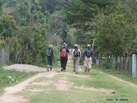 Caminatas en grupo
