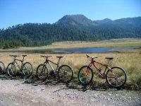Paseo en bici guiado al Santuario Mariposa Monarca