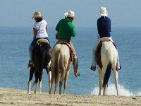 Cabalgatas en Los Cabos