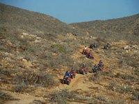 Tour en el desierto