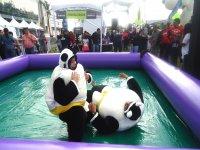 Sumo Panda