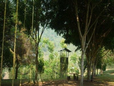 Rincón Ecológico Xochicalli