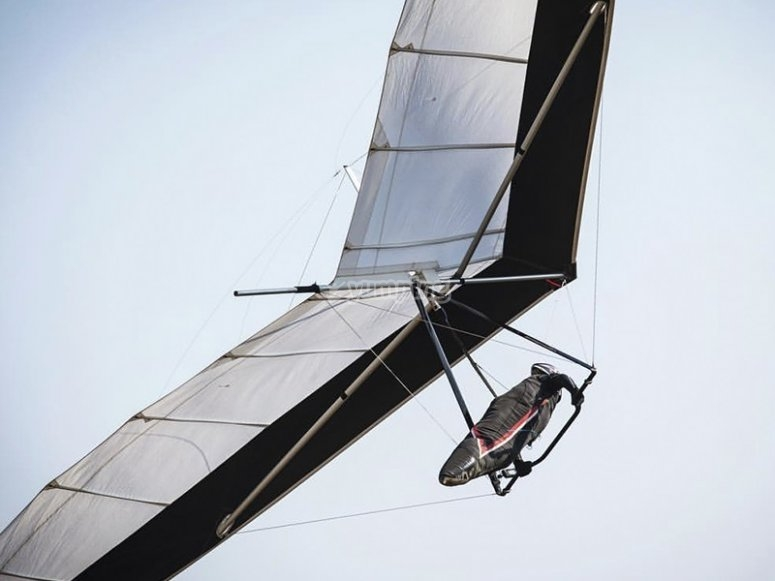 Theoretical and practical course for flying in the Delta Wing