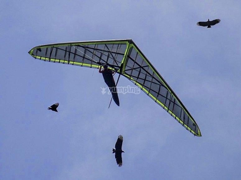 Personal especializado para enseñar las mejores maniobras en el aire