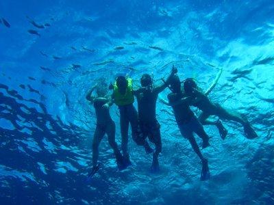 Cozumel Tours Snorkel