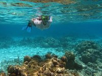 Snorkel en Tulum