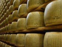 Cheese cellars