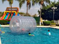 Giant Zorbing in the pool