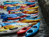 Get on one of our kayaks