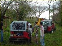 Jeeps 4x4 por la selva