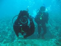Diving with guides