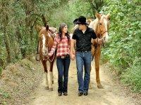 Horseback riding in the Santiago Mountains
