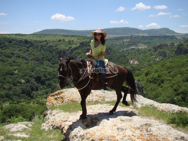 Horseriding the river