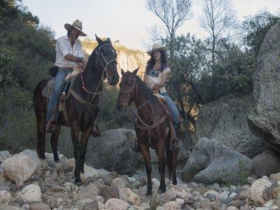 5h horseriding in Cañada de la Virgen canyon