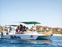 Catamaran and tours