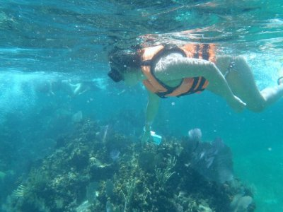 Snorkel Native Park