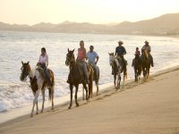 paseo a caballo en playa
